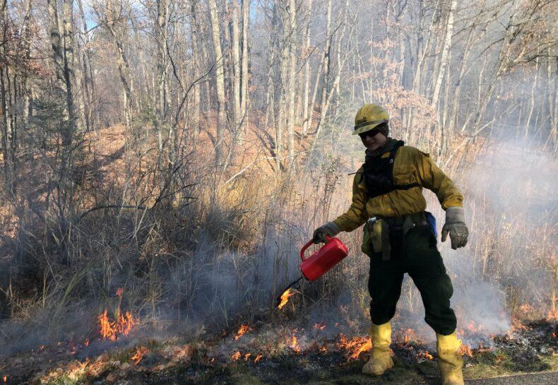 Late November spiking – and burns!