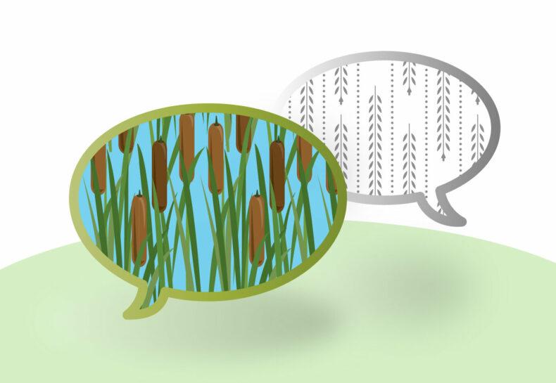 Conservation Language