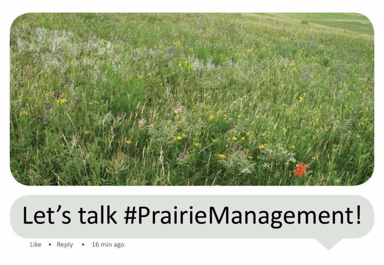 The Minnesota Prairie Landowner Network