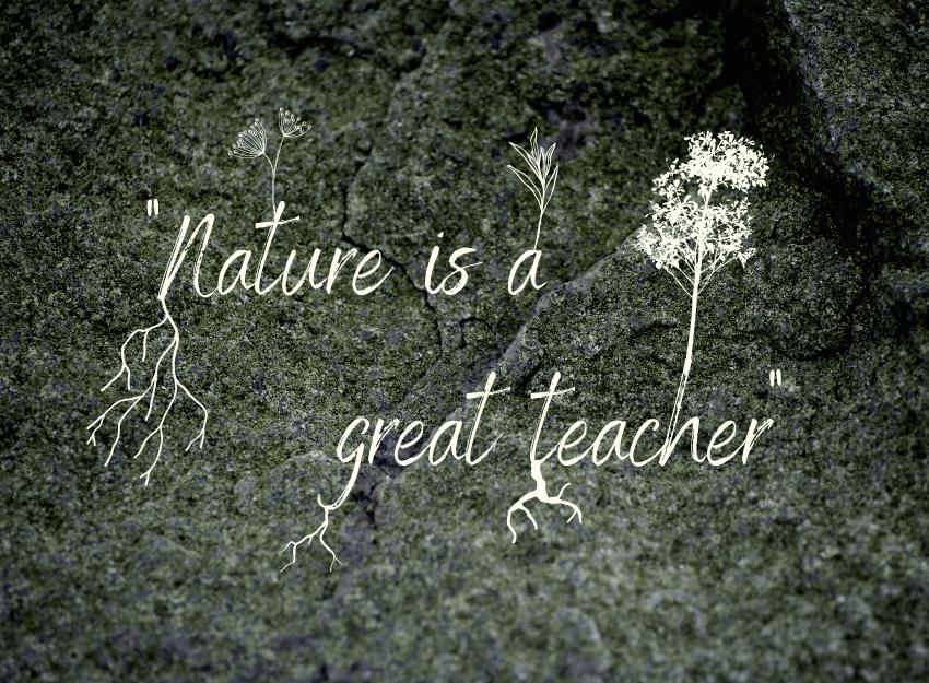 Nature is a great teacher